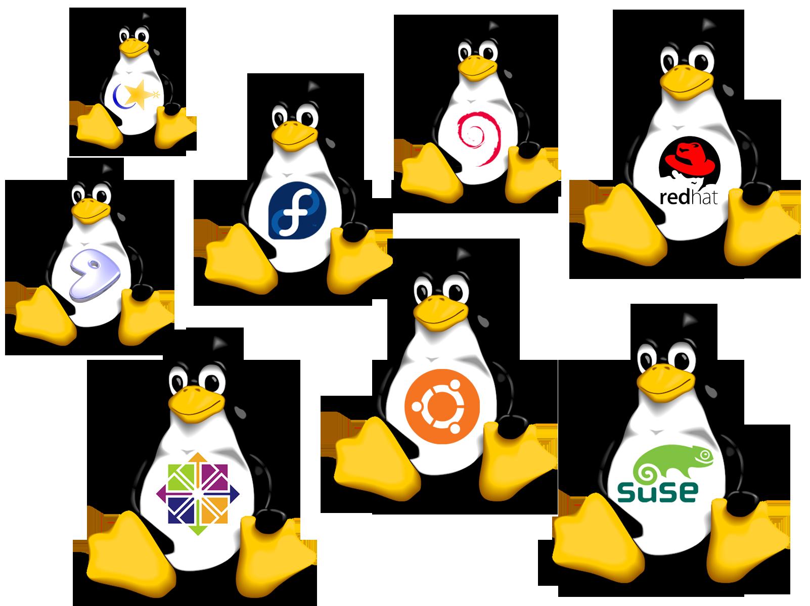 Linux Distribuciones